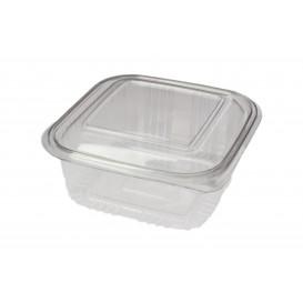 Plastic scharnierende Deli-Container PET Vierkant 500ml (100 stuks)