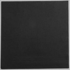 Papieren servet zwart 25x25cm 2C (2100 stuks)