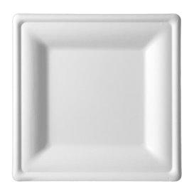 Suikerriet bord Vierkant wit 20x20 cm (50 stuks)