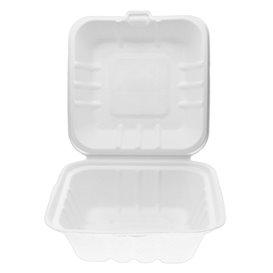 Suikerriet Burger Box wit 15x15x8cm (50 stuks)