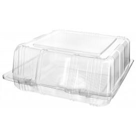 Plastic scharnierende bakkerij Container PET 18x18x8cm (20 stuks)