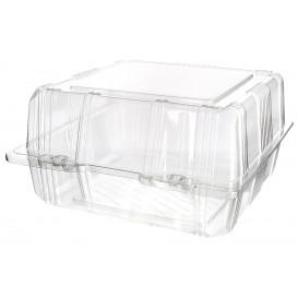 Plastic scharnierende bakkerij Container PET 18x18x10cm (20 stuks)