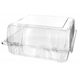 Plastic scharnierende bakkerij Container PET 20x20x10cm (20 stuks)