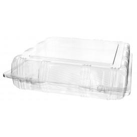 Plastic scharnierende bakkerij Container PET 22x22x6cm (220 stuks)