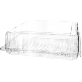 Plastic scharnierende bakkerij Container PET 25x25x8cm (220 stuks)