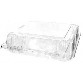 Plastic scharnierende bakkerij Container PET 20x20x6cm (220 stuks)