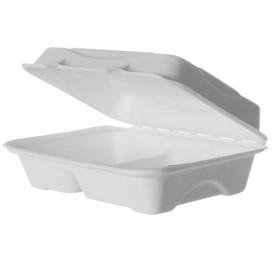 Suikerriet Gescharnierd Container wit 2C 23x15x7,5cm (50 stuks)