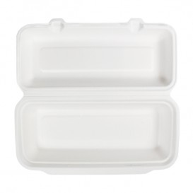 Suikerriet Gescharnierd Panini Container 29x27,3x3,75cm (50 stuks)