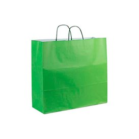 Papieren zak met handgrepen Groen 100g 22+9x23cm (25 stuks)