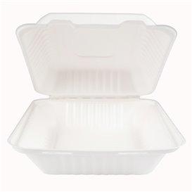 Suikerriet Gescharnierd Container + PLA wit 20x20x7,5cm (50 stuks)