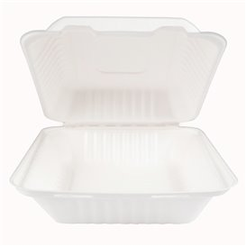 Suikerriet Gescharnierd Container + PLA wit 20x20x7,5cm (200 stuks)