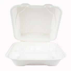 Suikerriet Gescharnierd Container wit 3C 23x15x7,5cm (50 stuks)