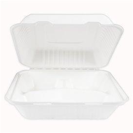 Suikerriet Gescharnierd Container + PLA wit 3C 23x23x7,5cm (50 stuks)